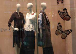 butterfly window display