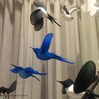 Bird Props