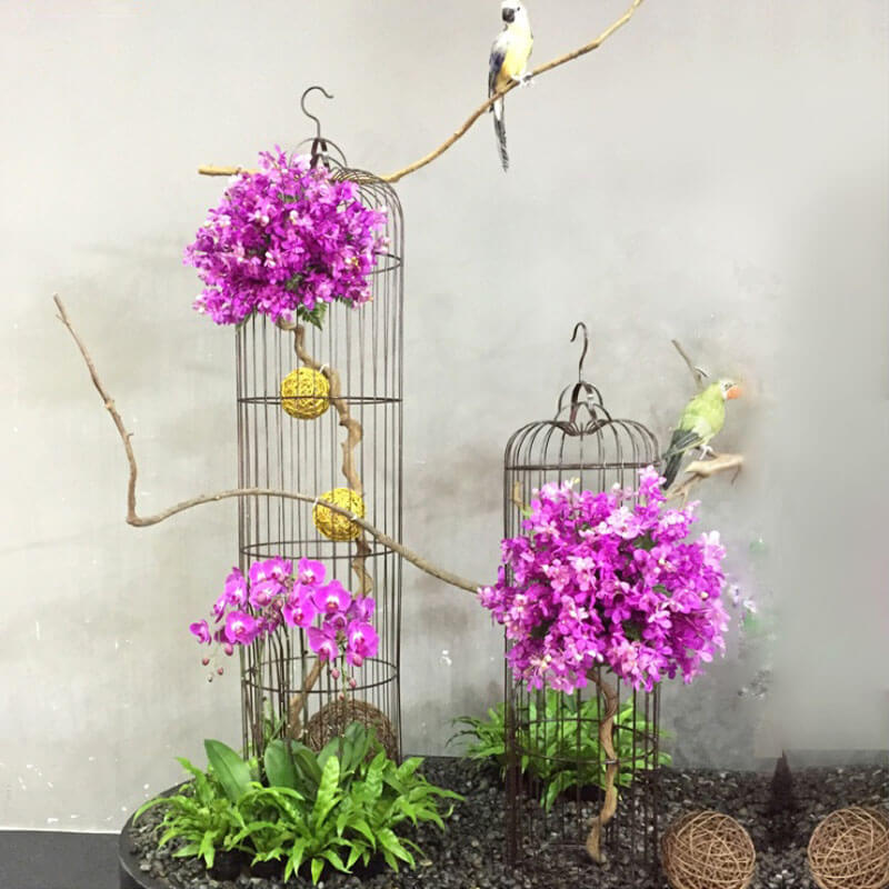 powder coated bird cage