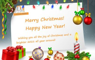 Merry Christmas--DM Window Display